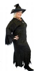 Raggedy Witch Costume Plus Size